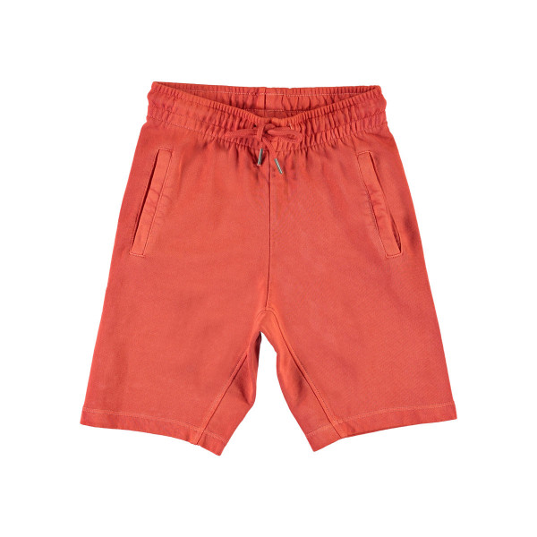 Shorts Aliases Burnt Sienna