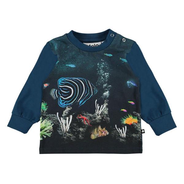 Sweatshirt Eloy Small Fish